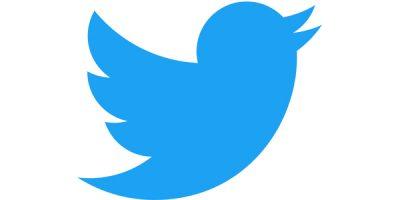 Manual dels governs a twitter
