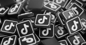 TikTok i Twitch, les xarxes del moment